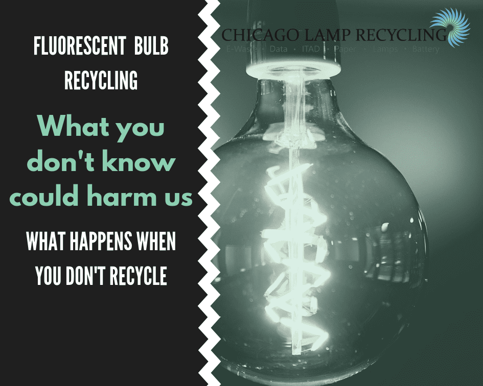 Fluorescent bulb recycling