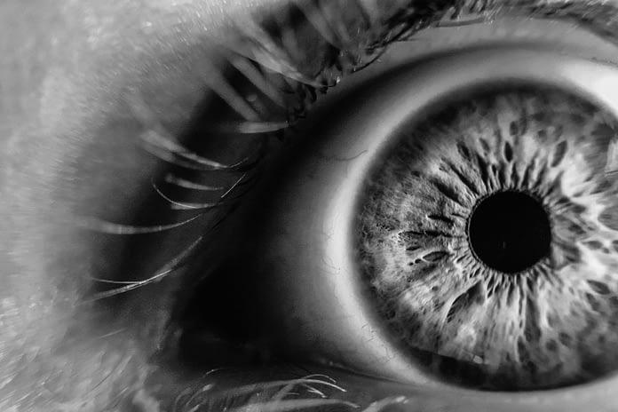 Blog | Ophthalmology & Macular Degeneration Treatment